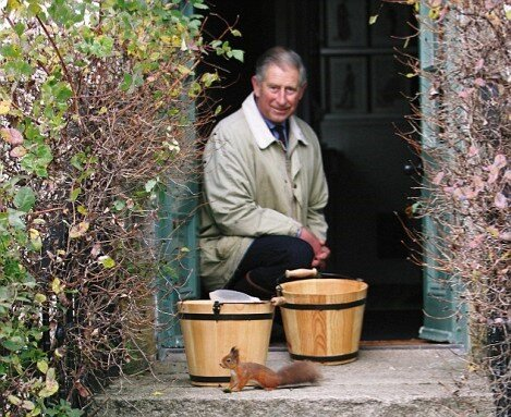 HRH The Prince of Wales, as Patron of Red Squirrel Survival Trust, celebrates Red Squirrel Volunteer Efforts on Red Squirrel Appreciation Day
